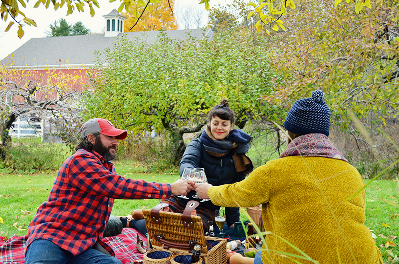 fall picnic at apple orchard
